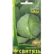 Organic Cabbage seeds Gerda Heirloom Vegetable Seeds