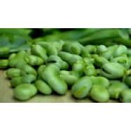 Beans seeds Vegetable Organic Heirloom Vegetable Seeds