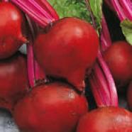 Organic Beetroot seeds Astar F1 Ukraine Heirloom Beet Vegetable Seeds