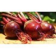 Beetroot Seeds Diy Organic Heirloom Vegetable Beet Seeds early