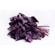 Basil Seeds Russian Heirloom Herb Seeds Organic Purple Leaf