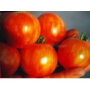Organic Tomato Vegetable seeds Tiger from Ukraine average germination