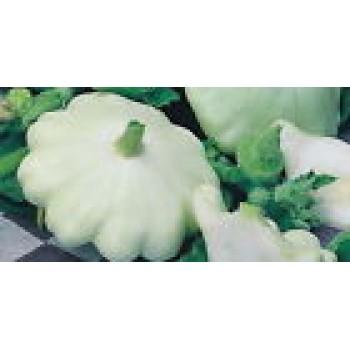 Eco Seeds White Squash - Zucchini Organic Heirloom Vegetable Seed from Ukraine