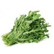 Rare Herb Seeds Arugula Vegetable Seeds Seed Organic Healthy