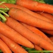 Carrot Seeds Natofi Organic Ukraine Heirloom Vegetable Seeds