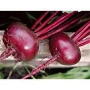 Beetroot Seeds Bullet Organic Heirloom Vegetable Beet Seeds